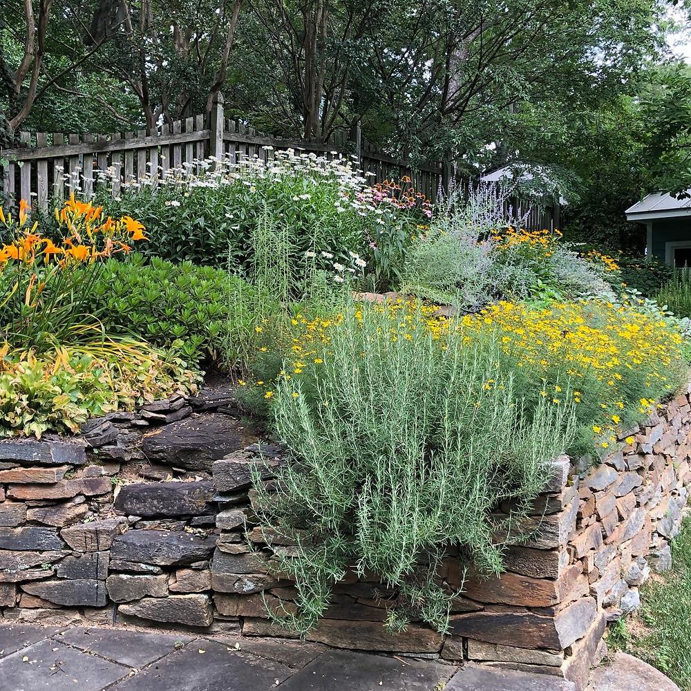lush landscape garden