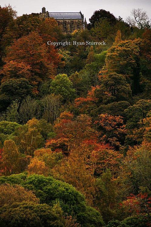 Autumn Rosslyn Chapel