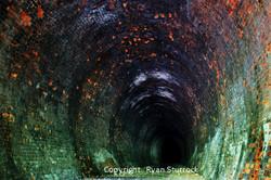 Neidpath Tunnel 2 low res wmk