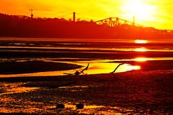 Forth Rail Bridge Sunset from Crammond I