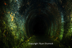 Neidpath Tunnel 1 WATERMARKED_low res