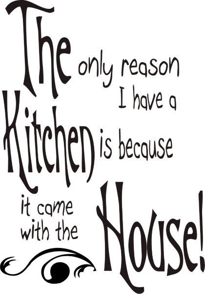THE ONLY REASON I HAVE A KITCHEN