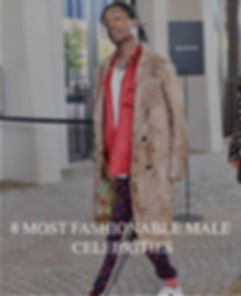 8 most fashionable males