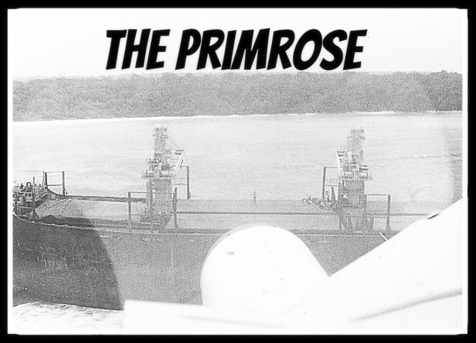 The primrose ship