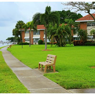 My Portfolio - Westminister Shores St Petersburg FL