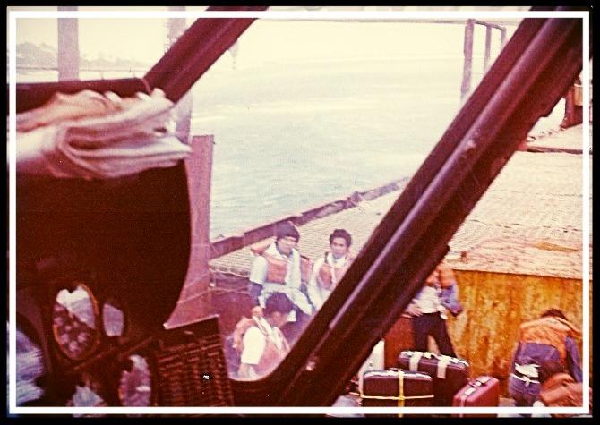 primrose rescue 1981
