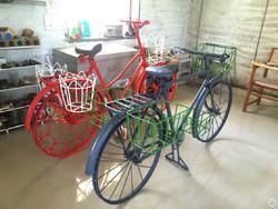 bicycle plantes