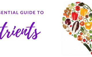 Key Nutrients- A quick guide to essential nutrients and what they do,
