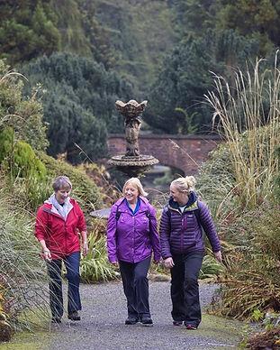 annesley-garden-walk-castlewellan-forest