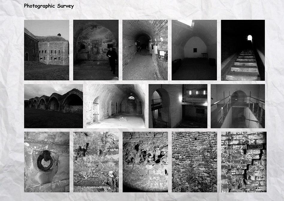 photo survey.jpg