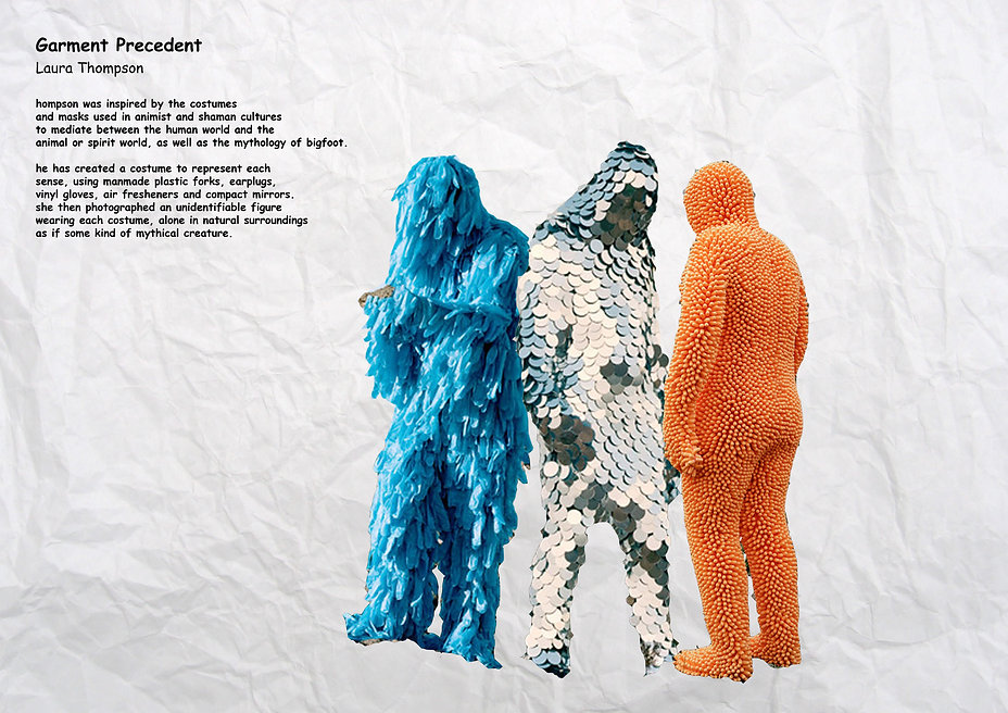 garment precedent.jpg