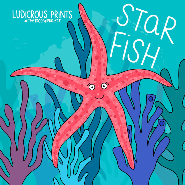 Starfish Illustration