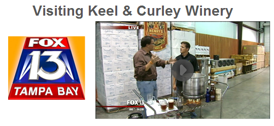 Keel & Curley - Good Day Tampa Bay