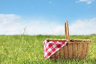 picnic in the park pic.jpg