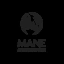 Mane Attraction Wigs