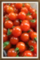 Tomaatit Chilega