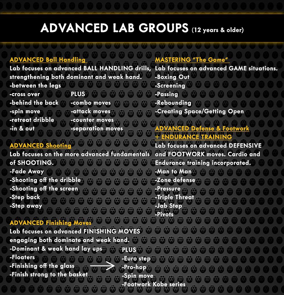 (advanced)website.png