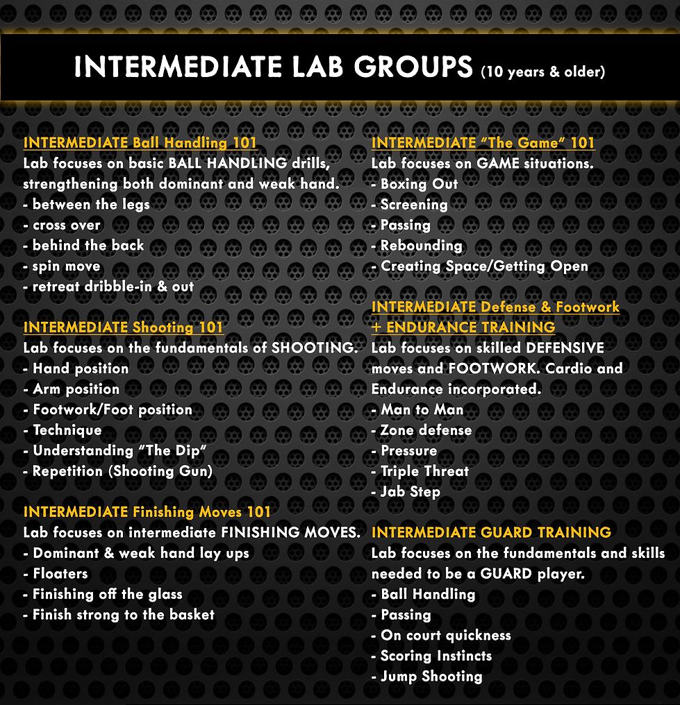 Intermediate(website).png