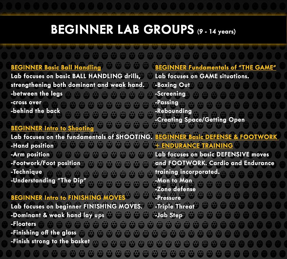 BEGINNER(website).png