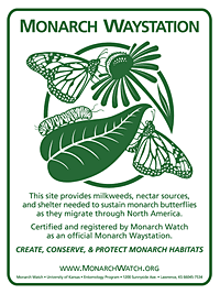 Monarch Waystation sign showing life cycle stages of monarch butterflies.