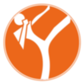 yourtrainer_logo.png