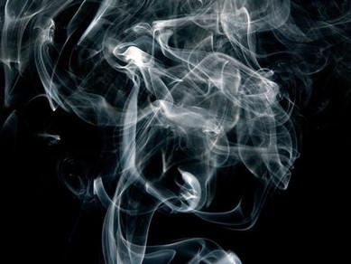 Sigara Dumanının Hayvan Dostlarımıza Etkisi