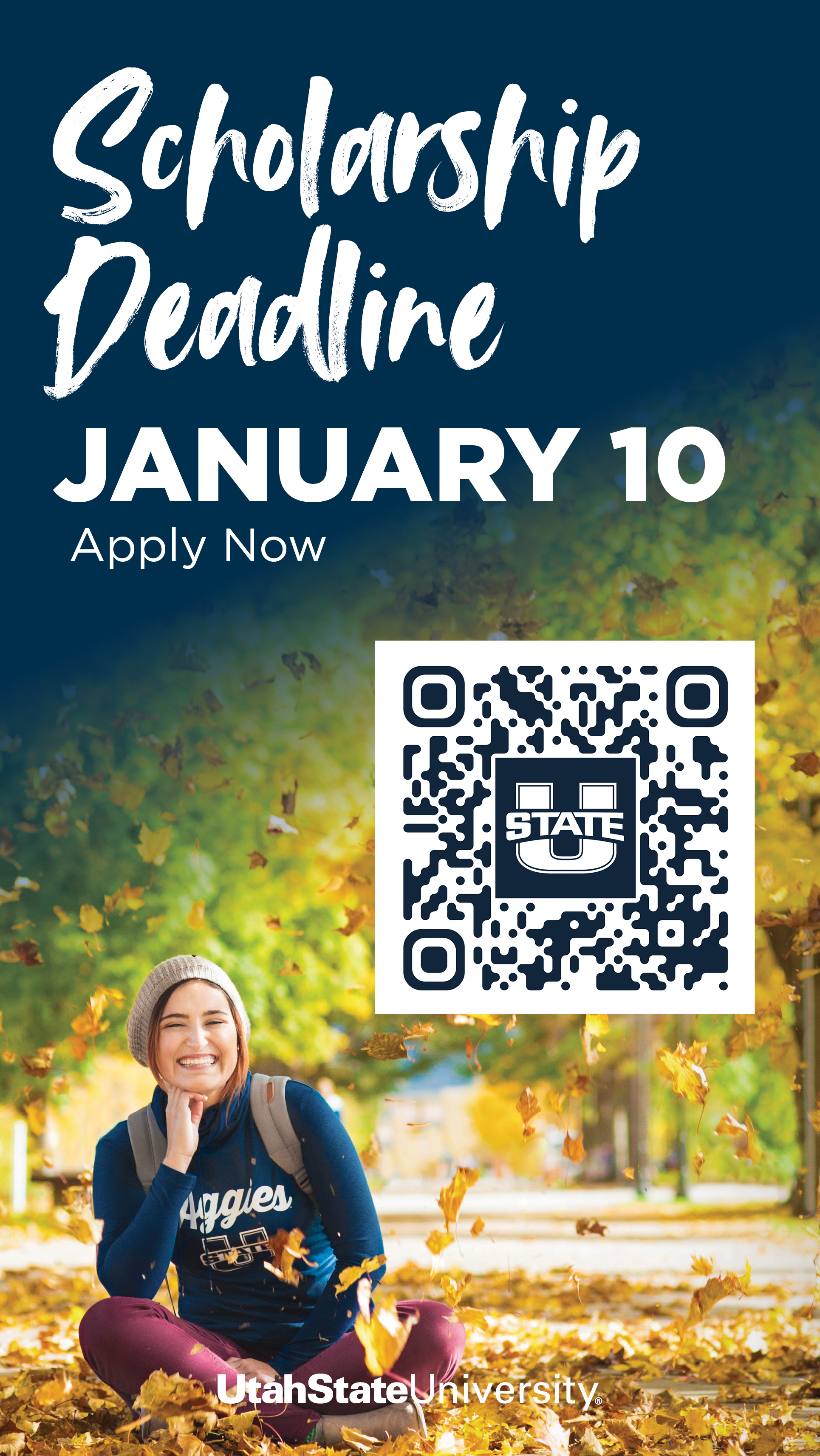 USU Term 3 ScholarshipDeadline