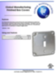 Finished Box Covers Single Toggle.jpg