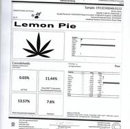 Lemon Pie #24