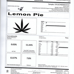 Lemon Pie #24