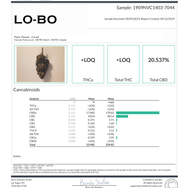 #6 Lo-Bo