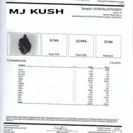 MJ Kush #23
