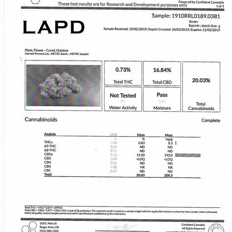 #10 LAPD