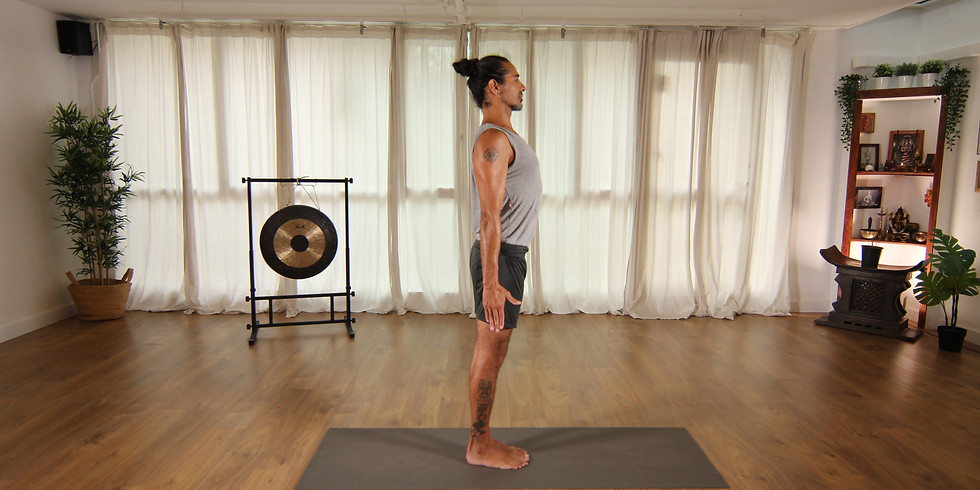 Hatha Vinyasa Krama  Yoga Teacher Training con Leo Cuda
