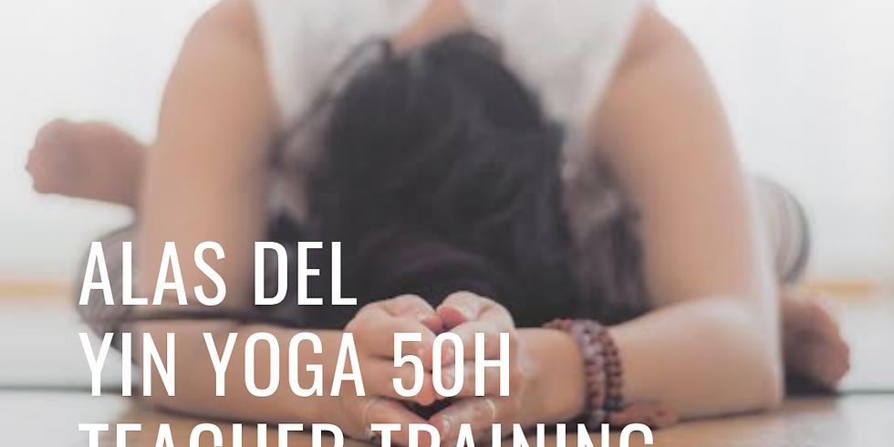 Wings of Yin Yoga (50h) Yoga Teacher Training with Kathy Paez