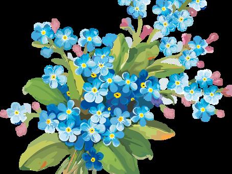 С Праздником Весны, дорогие женщины! С 8 марта!