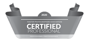certified professional seal 2020 - 500px