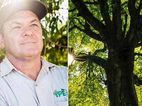 Engenheiro florestal é premiado e destina valor para o plantio de de árvores na Mata Atlântica