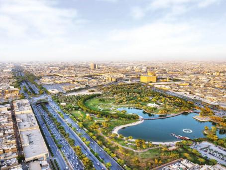 Países do Oriente Médio vão plantar 50 bilhões de árvores