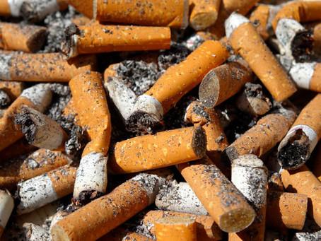 Startup mexicana transforma bitucas de cigarro em celulose limpa