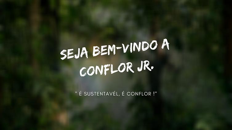 SEJA BEM VINDO A CONFLOR JR. (2).png