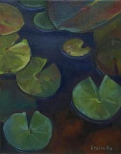 Wash Pond Lilies 10x8