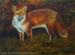 Red Fox, Red Phase 16x20