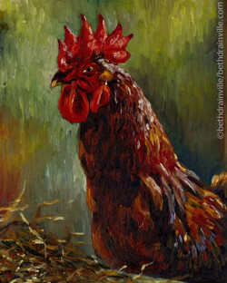 Jacques, the Rhode Island Red14x11