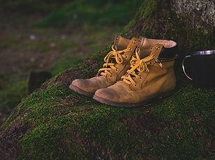 shoes-1638873_640.jpg