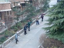 shanghai 11 feb (1).jpg