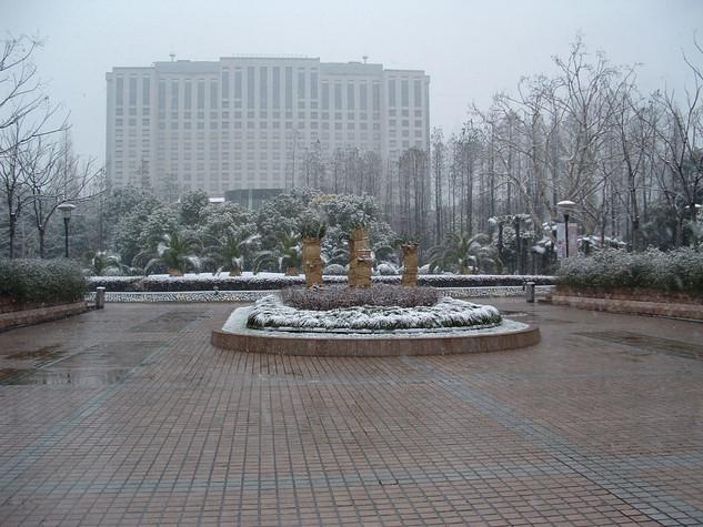 shanghai 17 feb (6).JPG