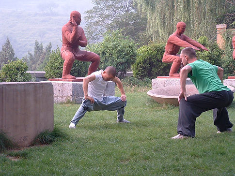 Shaolin Wushuguan with Wang Leijun 2006