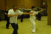 Workshop Chen stijl 20 Vorm Sang Xilin a