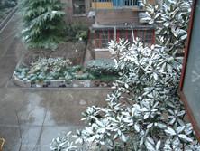 shanghai 17 feb (2).JPG